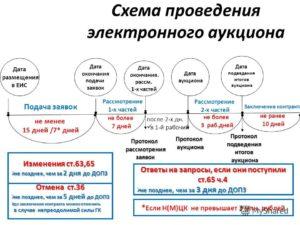 Сроки оплаты по госконтракту по 44 фз