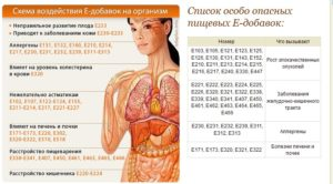 Е471 влияние на организм человека