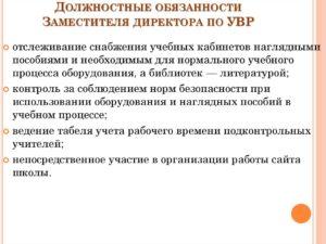 Должностная инструкция заместителя директора по социальным вопросам