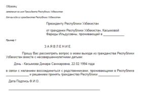 Образец заявления отказа от гражданства украины в упрощенном порядке