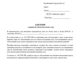 Образец заявления о принятии предварительных обеспечительных мер в арбитражный суд