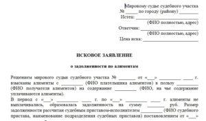 Исковое заявление об обращении взыскания на имущество должника по алиментам