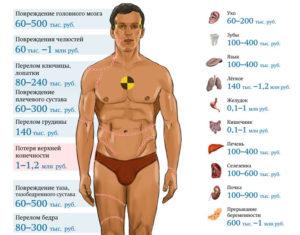 Стоимость мужского яичка на рынке органов