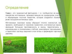 Понятие газон в законодательстве в москве