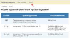 Штрафы ппс онлайн проверка
