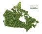 Зеленая карта канада